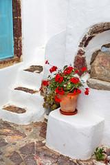 charming small greek details. Santorini streets