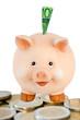 Freundliches lachendes Sparschwein mit Eurogeld