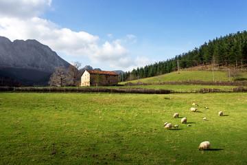 basque farm house with seep
