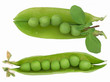 peas in the shell isolated