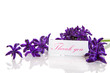 hyacinth flowers with gratitude