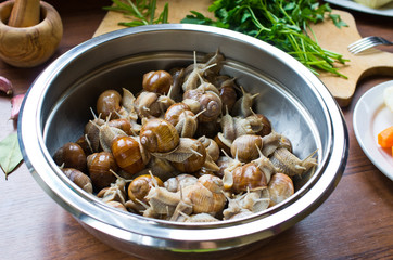 Snails in the bowl during preparation