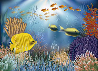 Underwater wallpaper with fishes. vector illustration
