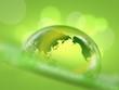 グローバルエコロジー