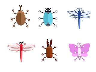 夏の昆虫たち