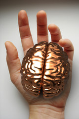 brain in you hand