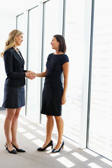 Two Businesswomen Shaking Hands In Office