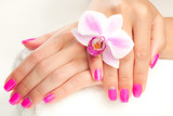 Fototapety beautiful manicure with pink orchid and towel