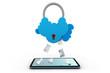 secure cloud computing.