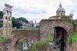 Roma, il Foro Romano, veduta
