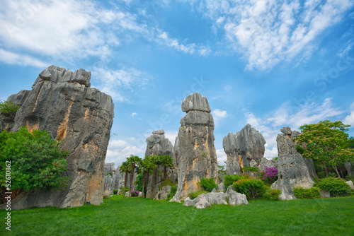 Natural landscape of China - Stone Forest National Park