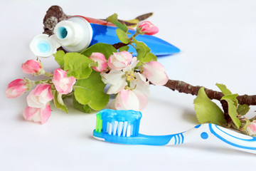 Frühling für schöne Zähne