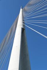 Pylon bridge on Ada, Serbia