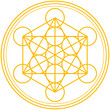 Merkaba in Flower of Life ( Merkaba in Blume des Lebens )
