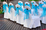 Wedding chairs decorated in white and blue color.