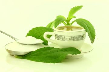 stevia and stevia powder with tea cup