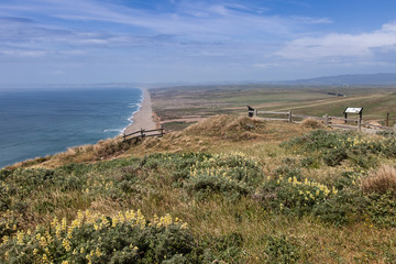 Views around Point Reyes National Seashore