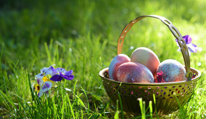 easter eggs in the morning