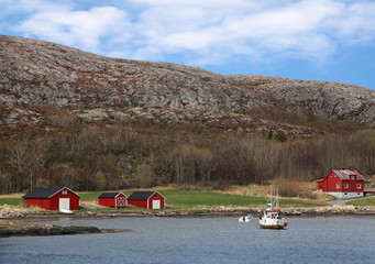 Norwegian village with red wooden houses