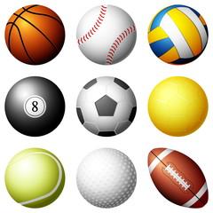 Sport balls on white background. Vector illustration.