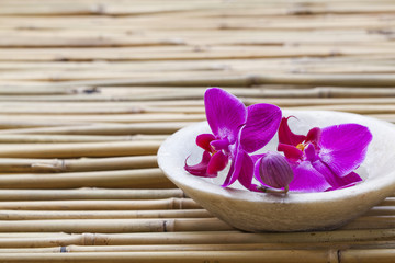 femininity and wellbeing with orchid flowers