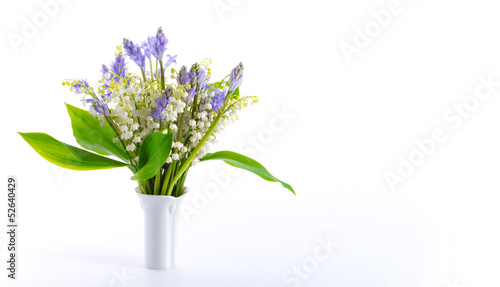 Lily of the Valley and Scilla
