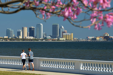 Jogging on the Bayshore Boulevard in Tampa