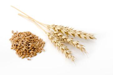 Weizenähren und Weizenkörner
