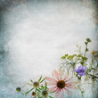 Vintage shabby chic background with medicinal herb