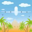 Plane over desert