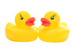 yellow rubber duck-couple-front_on white