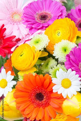 Foto op Canvas Madeliefjes Sommerblumen
