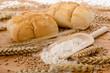 Weizen - Mehl - Brötchen