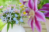 garden flowers in arrangement