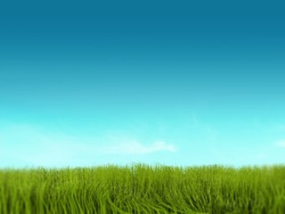 proto verde animazione