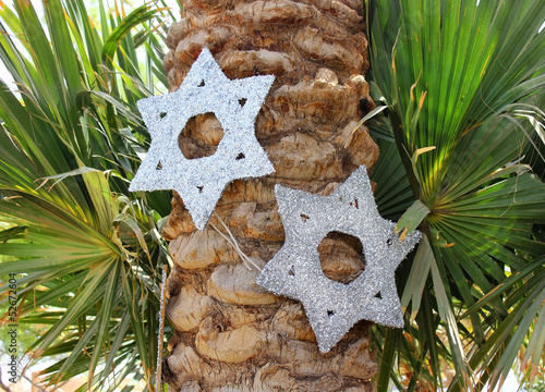 six-pointed stars on a palm tree