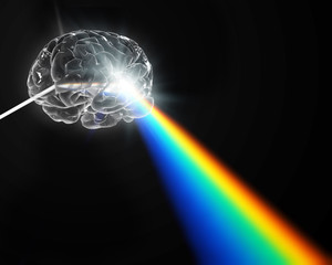 A brain shaped prism dispersing white light