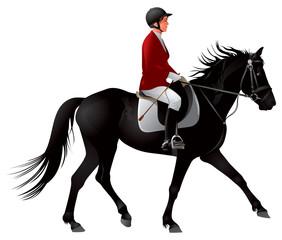 Equestrian sport black horse rider