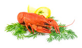 Red cooked lobster with dill and lemon