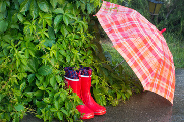 childish gumboots with umbrella