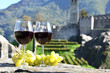 Pair of wineglasses and grapes. Bellinzona, Switzerland