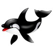 Killer Whale cetacean Orca Cetaceo Cartoon - Vector