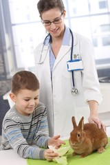 Smiling boy feeding rabbit at pets' clinic
