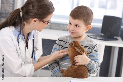 Veterinary and kid discussing rabbit treatment
