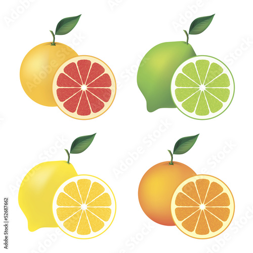Set of citrus fruit – grapefruit, lime, lemon and orange