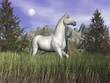 White horse in the grass - 3D render