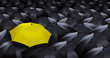 many blacks umbrellas and one yellow umbrella