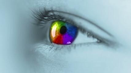 Multicolour iris