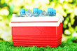 Picnic refrigerator with bottles of water and ice cubes on