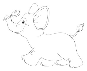 Elefant, Lupe